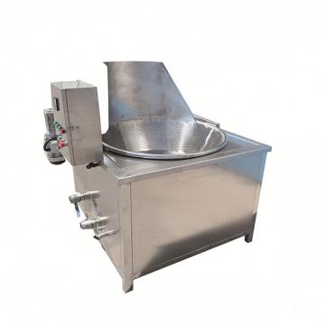 Microcomputer Large Electirc Kitchen Deep Fryer