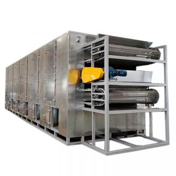 Continuous Automatic Shredded Radish Multi Layer Mesh Belt Dryer Drying Machine for Food Plant